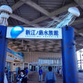 Mizuki Shinoharaさんの新江ノ島水族館への投稿