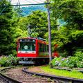 平岩蘭さんの箱根登山鉄道あじさい電車への投稿