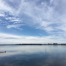 Papa-hayashiさんの浜名湖への投稿